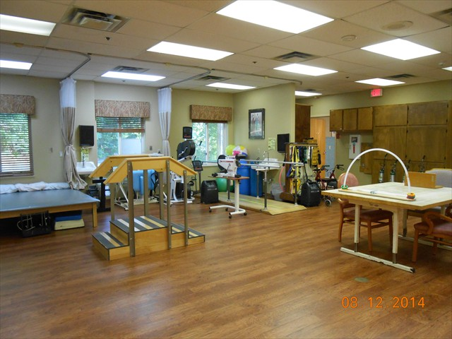 Therapy Gym Interior